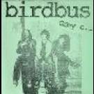 Birdbus - Grey E.p