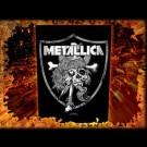 Metallica - Raiders Skull